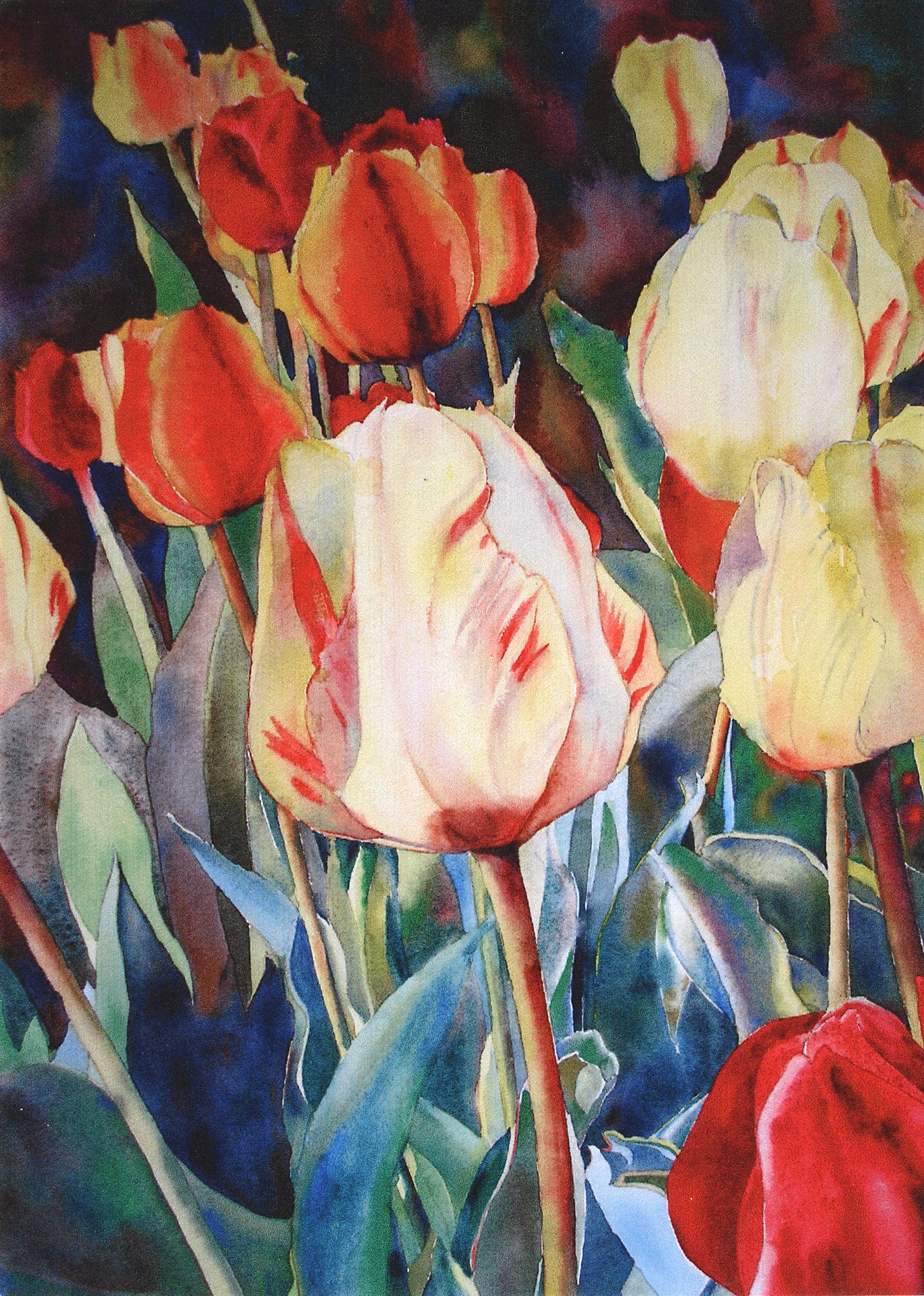 Spring Blossoms: Tulip Bed