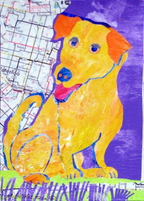 Denver Dog