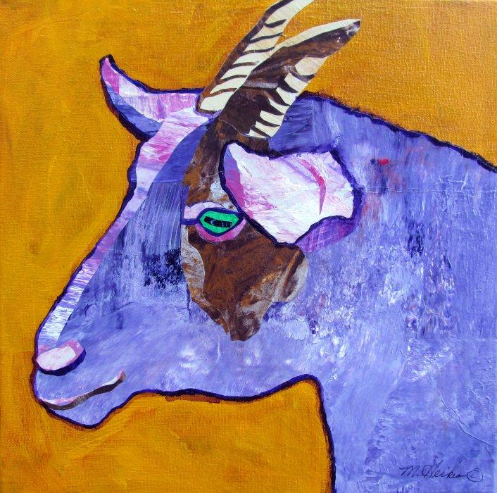 Verne, The Pygmy Goat